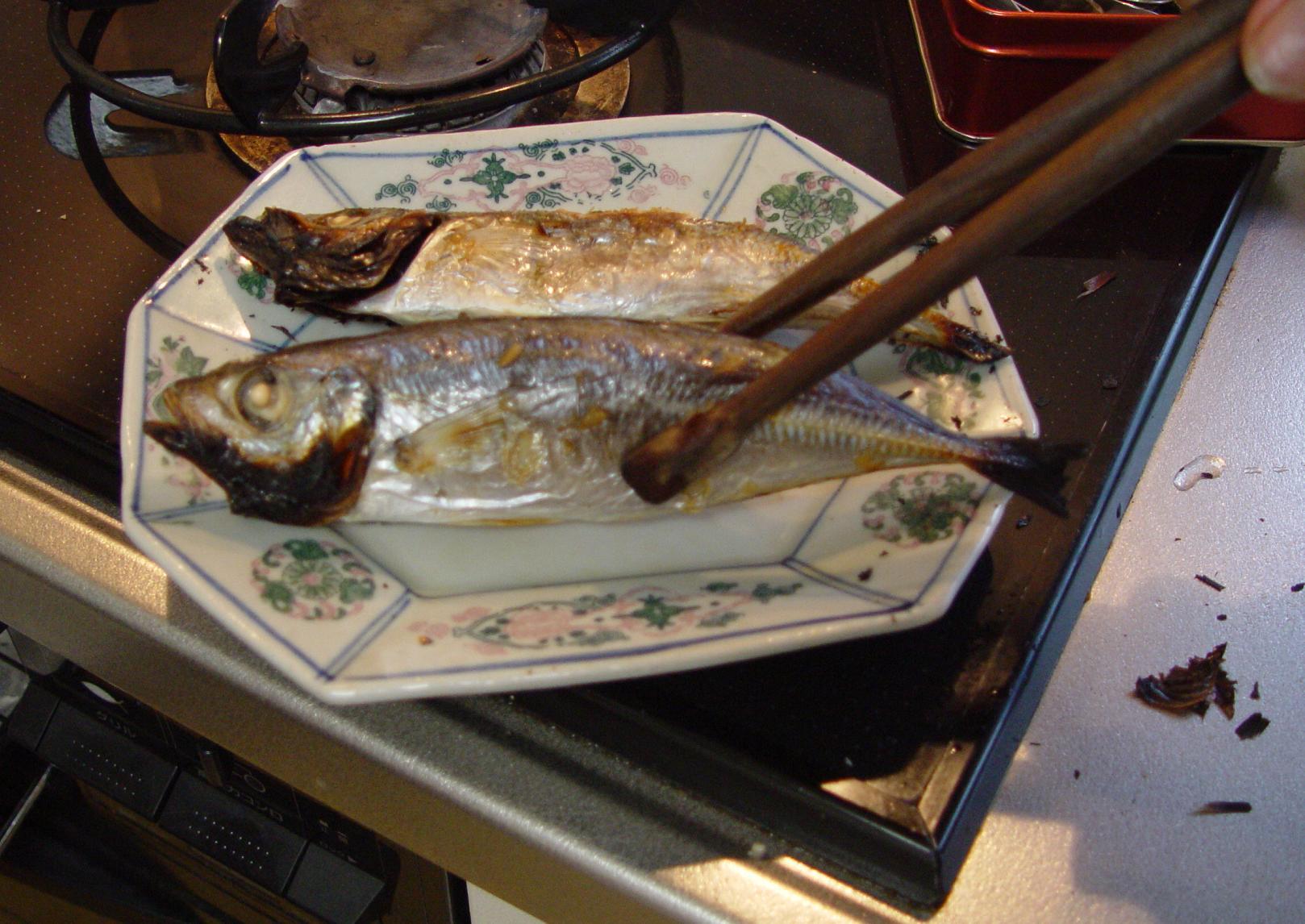 タング魚.JPG